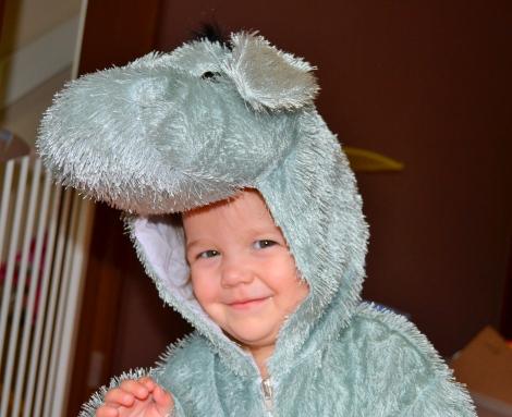 Donkey kid's costume