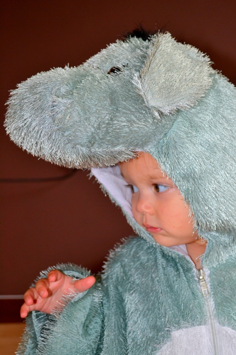 kid's animal costumes