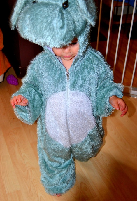 Kid's Animal Costumes