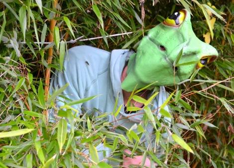 Rubber Frog Mask