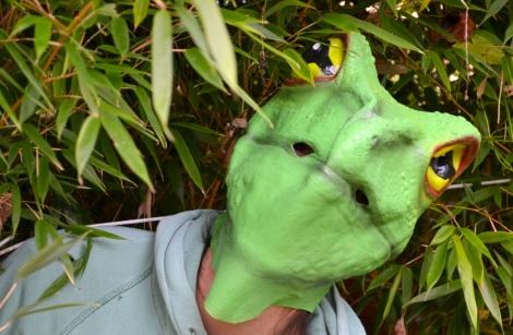 Adult Frog Mask