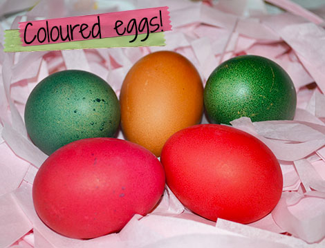 Coloured Eggs!